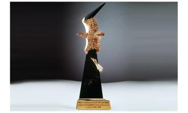 Опубликован лонг-лист Национальной Академии кинематографических искусств и наук  России