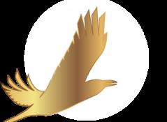 Кинофестиваль «Золотой ворон» приглашает кинематографистов на Чукотку