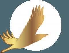 Золотой орел 2018: номинанты