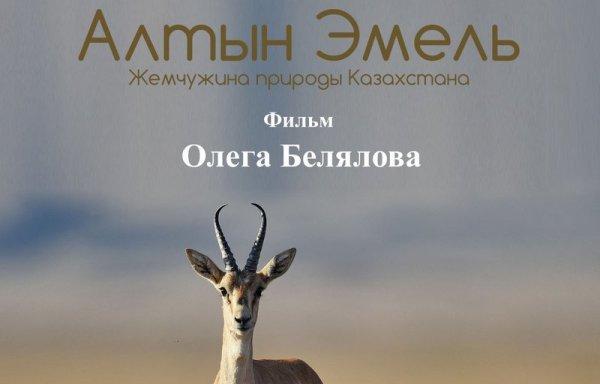 Документальный фильм «Алтын Эмель» получил приз в Китае