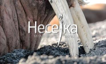 14 октября в рамках Всероссийского фестиваля науки НАУКА 0+ состоится премьера научно-популярного фильма Владимира Марина «НЕСЕЙКА. МЛАДШАЯ ДОЧЬ».