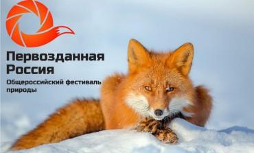 """Обзор кинопрограммы фестиваля """"Разумный кинематограф"""""""