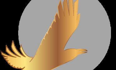 «Золотой ворон» 2019 начинает прием заявок