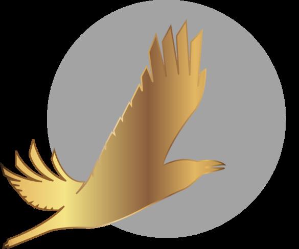 IV Международный арктический кинофестиваль «Золотой ворон» начинает прием заявок