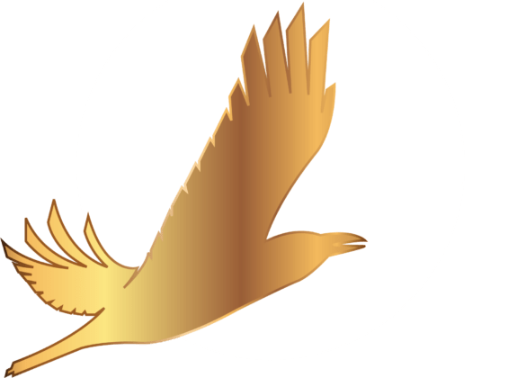 V Арктическом международном кинофестивале «Золотой ворон» начинает прием заявок