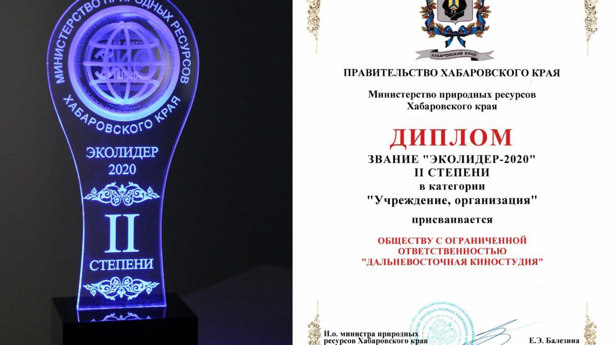 Хабаровск. Итоги краевого экологического конкурса «ЭкоЛидер-2020»